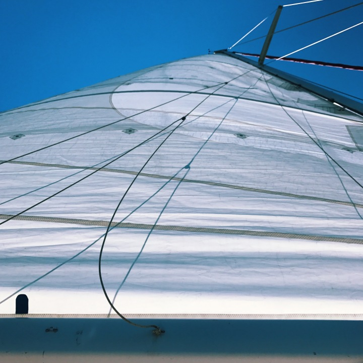 The 3 Key Lessons from Sailing that are Important for yourBusiness.