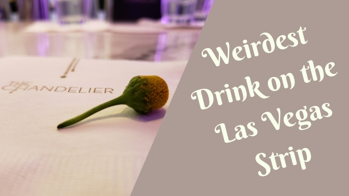 Food: The Weirdest Drink on the Las VegasStrip!