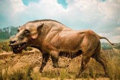 Model of prehistoric boar