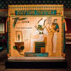 Egyptian Mummy Exhibit
